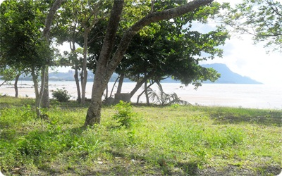 langkawi beach land for sale